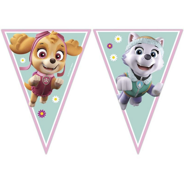 PAW PATROL SKYE & EVEREST 1 Triangle Flag banner